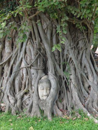 旅行記、ときどきゲイ – バンコク旅行 in 2019<中編>